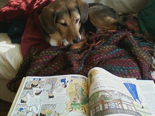 Giles reads a book.