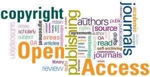 openaccess_type