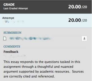 Actual feedback on a midterm assignment received by the author.