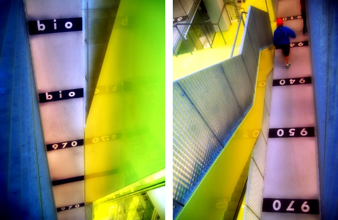 Two views of the Seattle Public Library's Book Spiral