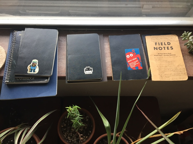 A few of my pocket notebooks and plants.