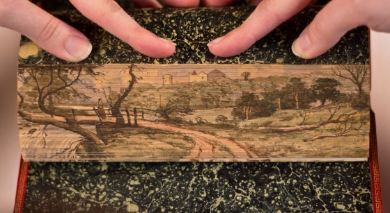 A fore-edge painting.  (Source: Stanford Libraries, Flickr CC BY-NC-SA 2.0)