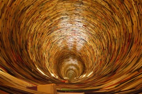 Peering Down the Rabbit Hole: Prefacing the MLIS with WorkExperience