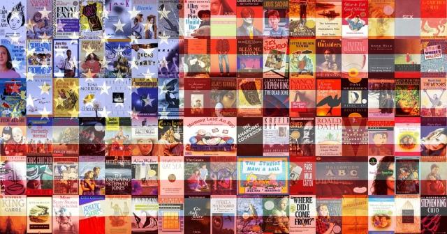banned books american flag